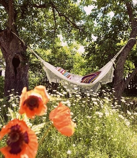 25 Best Ideas About Hammocks On Pinterest: Summer Hammock Pictures, Photos, And Images For Facebook