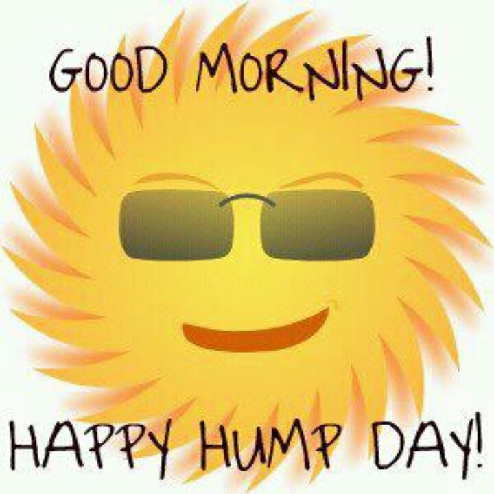 good morning happy hump day pictures photos and images for