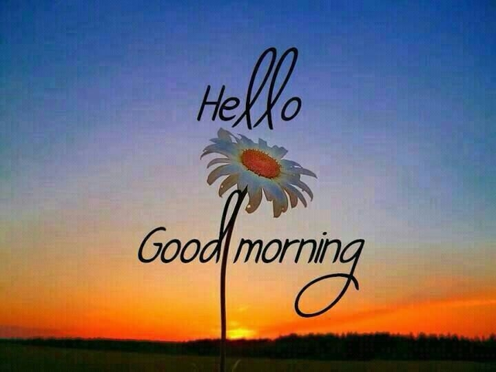Hello Good Morning Pictures Photos And Images For Facebook Tumblr Pinterest And Twitter