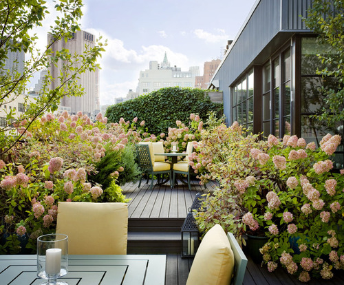 Balcony garden flowers pictures photos and images for for Rooftop patio garden ideas