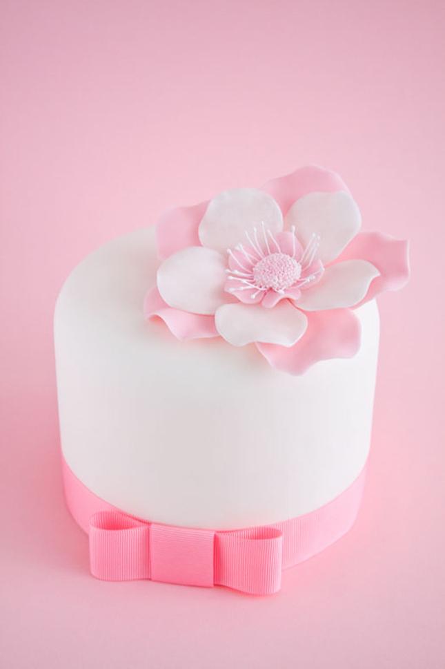 Pretty Little Pink Cake