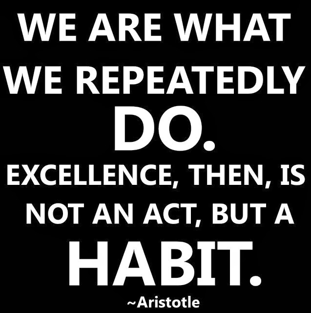 Aristotle Quotes We Are