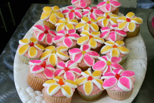 Marshmallow Flower Cupcakes Pictures, Photos, and Images for Facebook ...