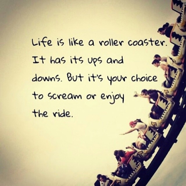 Image result for roller coaster of life