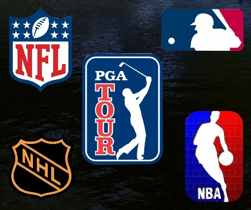 Logos Of Pro Sports League Pictures, Photos, and Images ...