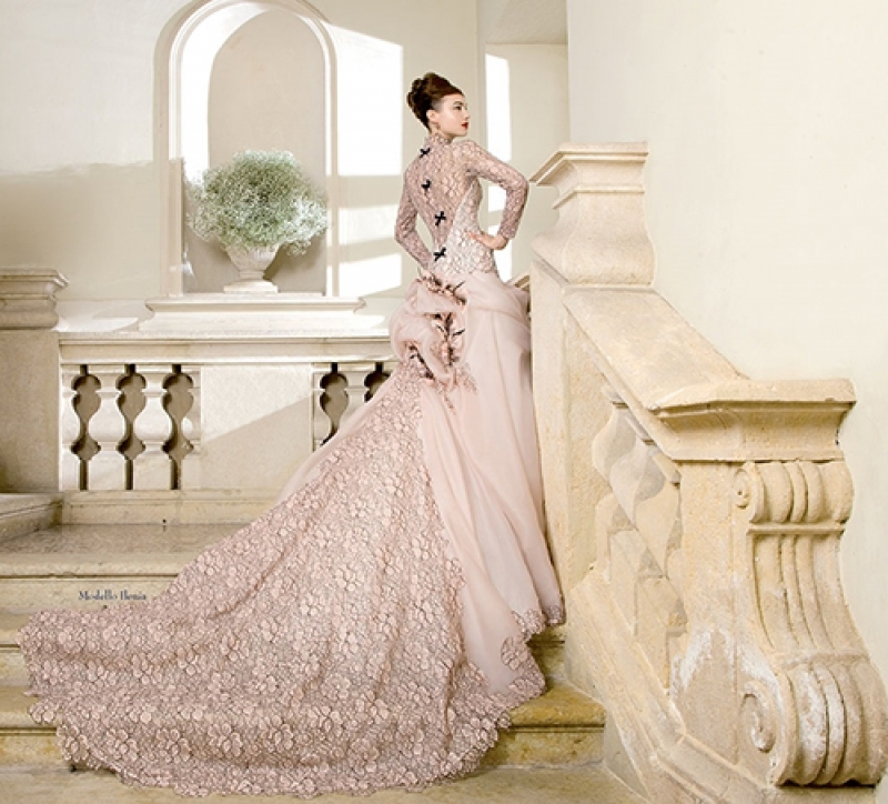 Do It Yourself Wedding Gown Preservation: Elegant Pink Wedding Gown Pictures, Photos, And Images For