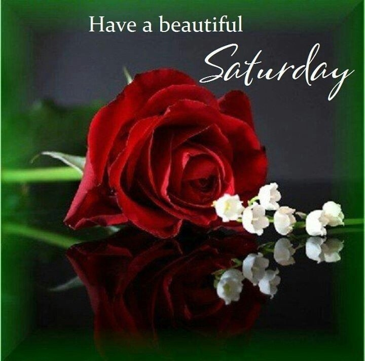 Image result for beautiful saturday