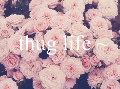 Thug Life Pictures Photos And Images For Facebook Tumblr