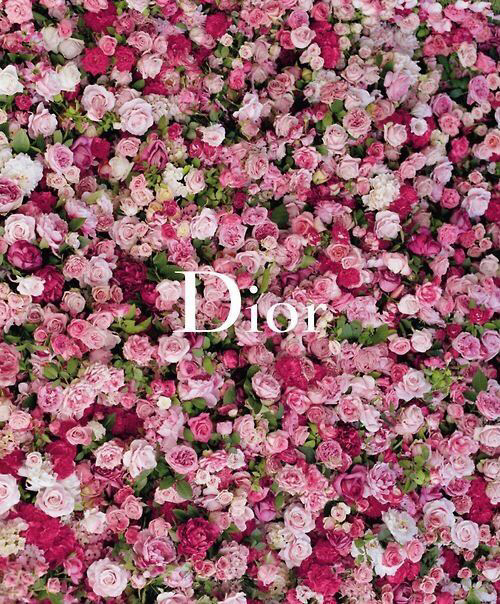 Dior Pictures Photos And Images For Facebook Tumblr