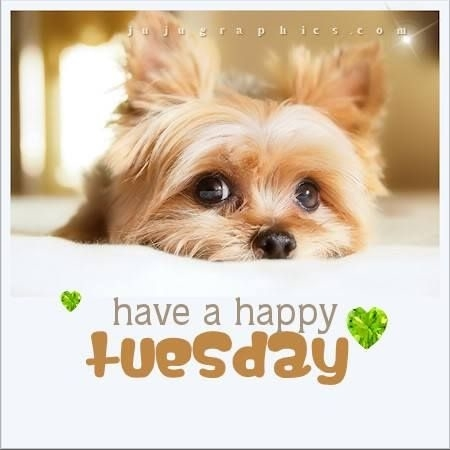 98846-Happy-Tuesday.jpg