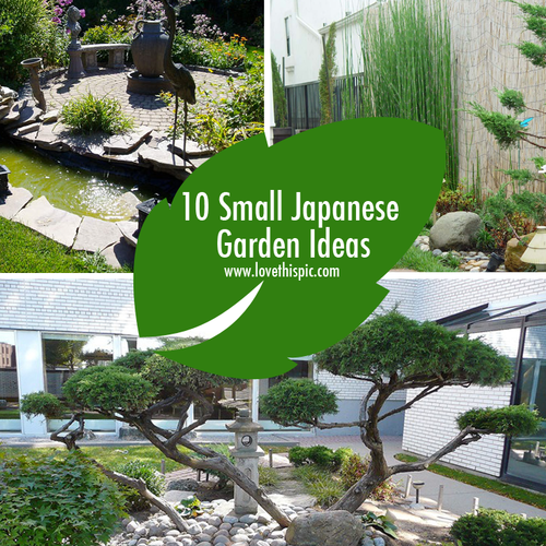 10 small japanese garden ideas - Small japanese garden ideas ...