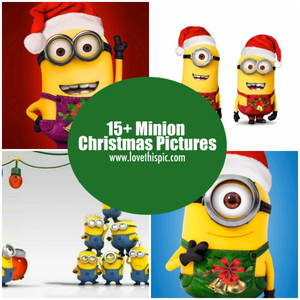 15 minion christmas pictures - Minion Christmas Song