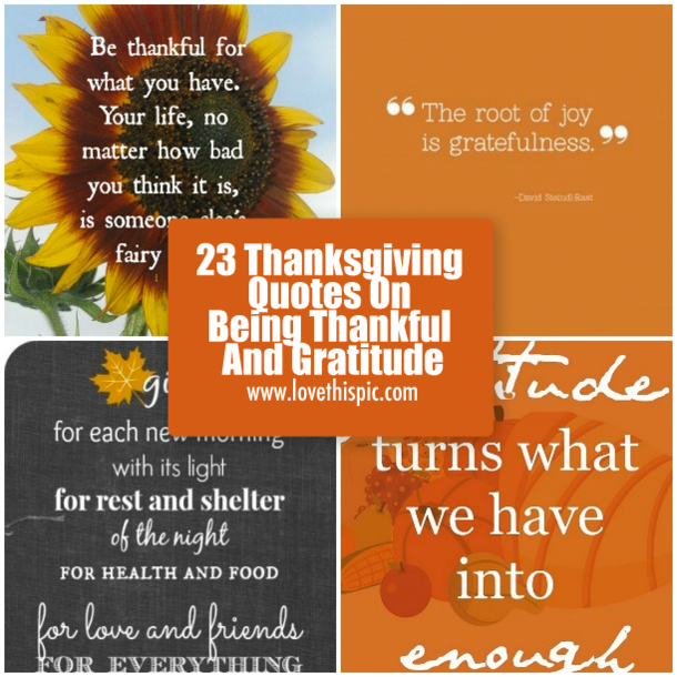 Inspirational Quotes About Gratitude: 23 Thanksgiving Quotes On Being Thankful And Gratitude