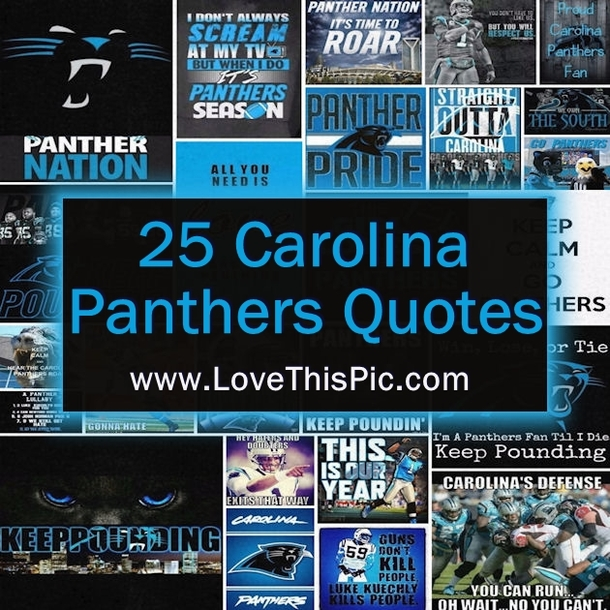 Funny Friday Quotes Humor: 25 Carolina Panthers Quotes