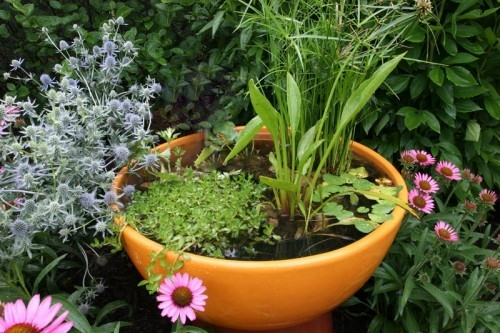 8 Refreshing Diy Container Water Gardens