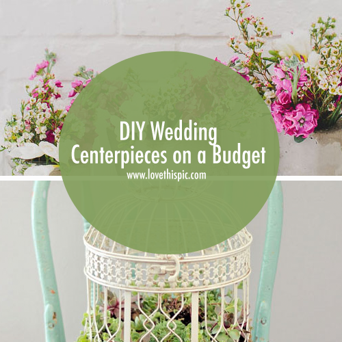 18 Diy Wedding Decorations On A Budget: DIY Wedding Centerpieces On A Budget