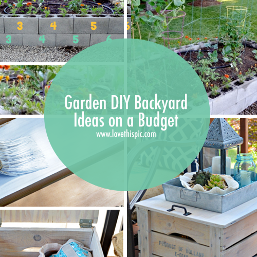 Garden diy backyard ideas on a budget Diy garden ideas on a budget