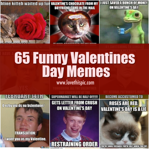 Facebook  Twitter  Pinterest  Google+. Whether You Are Celebrating Valentineu0027s  Day Or Dreading It, These Funny Memes ...