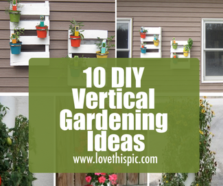 10 DIY Vertical Gardening Ideas