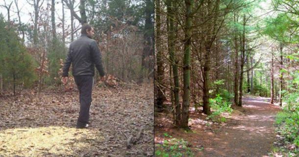 Man Walking In Woods Sees Odd Sight Finds 2 5 Million