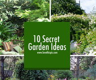 10 Secret Garden Ideas