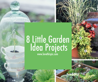 8 Little Garden Idea Projects