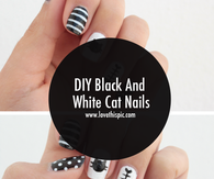 DIY Black And White Cat Nails