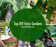 Top DIY Fairy Gardens