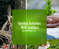 Garden Activities With Toddlers