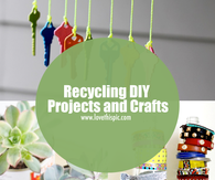 Recycling DIY Projects and Crafts