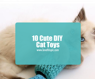 10 Cute DIY Cat Toys