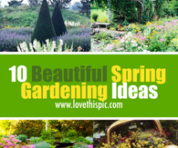 10 Beautiful Spring Gardening Ideas