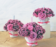 Flower pots cupcake liners