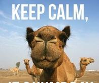Keep Calm It;s Humpday
