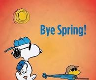Bye Spring