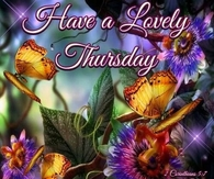 Have a lovely Thursday