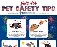 July 4th pet safety