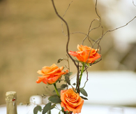 Orange rose table centerpiece