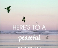 Here's to a peaceful Sunday