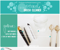 DIY NATURAL BRUSH CLEANER
