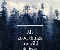 All good things are wild and free