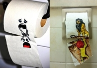 Toilet tissue art