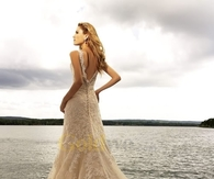 Champagne A-Line Chapel Train Lace Wedding Dress