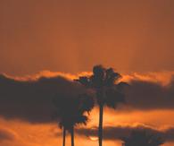 Dark Orange California Sunset