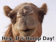 Hey its Hump Day
