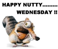Happy Nutty Wednesday