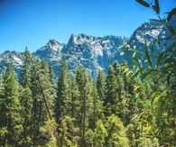 Beauty of Yosemite