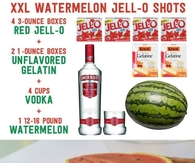 DIY Watermelon Jello Shots
