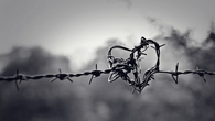 Barb wire heart