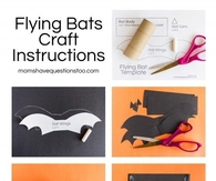 Flying Bat Craft